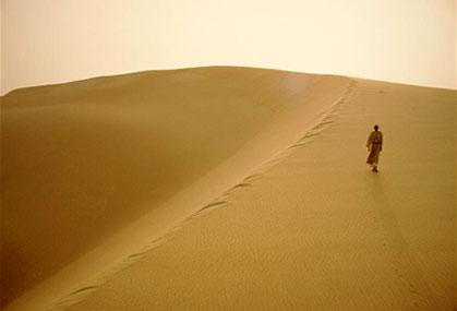 Soạn bài Bài ca ngắn đi trên bãi cát của Cao Bá Quát