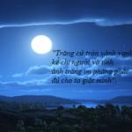 """Cảm nhận khổ cuối bài thơ """"Ánh trăng"""" của nguyễn Duy"""