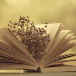 Mục lục soạn văn, soạn bài, học tôt ngữ văn 11