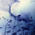 Nguyễn Bỉnh Khiêm- Vầng mây trắng thanh cao (4)