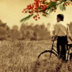 NLXH: Tình bạn và tình yêu