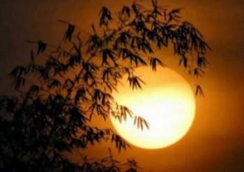 Đề bài: Phát biểu cảm nghĩ về bài thơ Ánh trăng của Nguyễn Duy