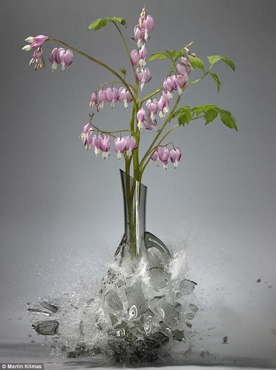 Chẳng may em đánh vỡ một lọ hoa đẹp. Hãy kể lại sự việc đó