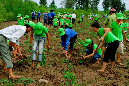 Bảo vệ rừng là nghĩa vụ của tất cả mọi người