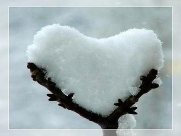 Nơi lạnh nhất không phải là Bắc Cực mà là nơi không có tình thương