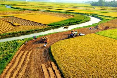 Soạn bài đất nước của Nguyễn Đình Thi