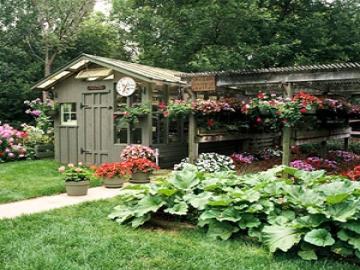 Soạn bài: Tập đọc Chuyện một khu vườn nhỏ
