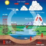 Chu trình sinh địa hóa và sinh quyển