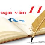 Hướng dẫn soạn văn: Bài viết số 3 (Lớp 11)