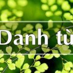 Soạn bài: Danh từ (Tiếp theo)