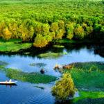 Soạn văn bài: Sông nước Cà Mau