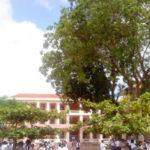 Đề thi thử THPT Quốc giaTHPT Nghi Lộc 2, Nghệ An (Lần 1)
