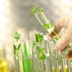 Chương I: Gen, mã di truyền và quá trình nhân đôi ADN