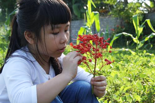 Bé Nguyễn Phan Anh Thư thích làm văn và tập võ. Ảnh:NVCC