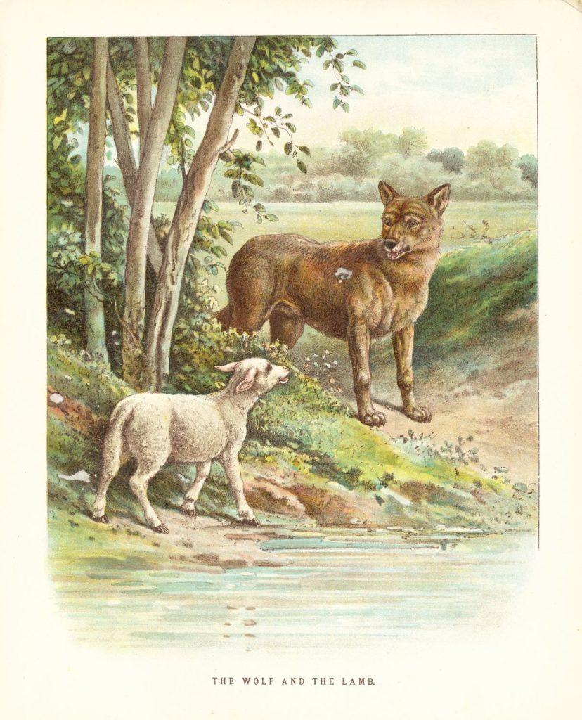 Nêu cảm nhận về bài Chó sói và cừu trong thơ ngụ ngôn của La Phông-ten